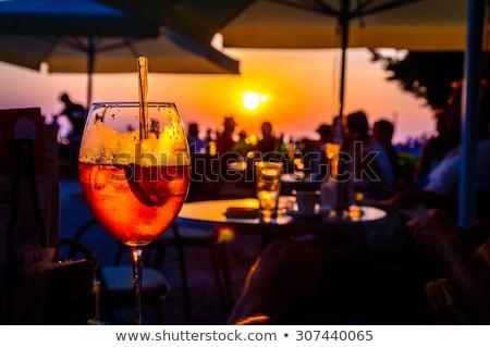 sereg · rózsaszín · pihen · tenger · nyárs · madár - stock fotó © lubavnel