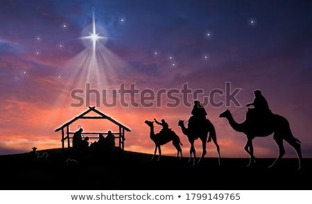 Stok fotoğraf: Noel · örnek · bakire · eşek · yolculuk · star