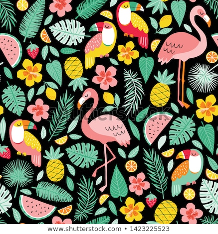 Toucans And Flowers Stock photo © barbaliss