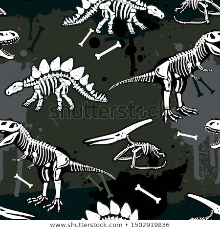 Dinoszaurusz csontváz végtelen minta csontok színes ragadozó Stock fotó © popaukropa