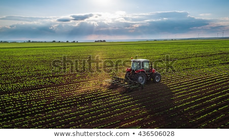 Aerial view the tractor plows the spring field.spring season of agricultural works at farmlands. Dro Stock photo © artjazz