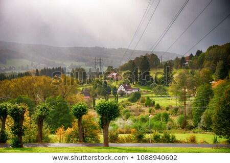 beatiful nature in Jesenik, Czechia Stock photo © glorcza