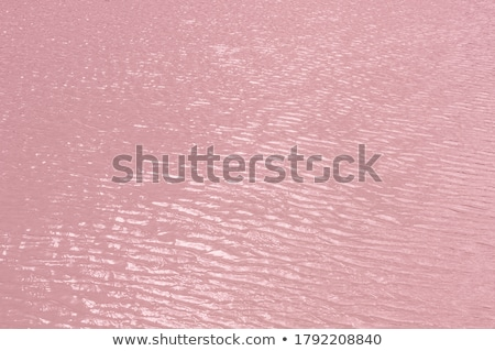 pink ripple background Stock photo © milsiart