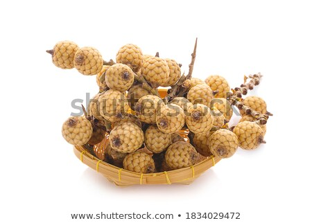 Rattan palm fruit isolated on white background stock photo © ungpaoman
