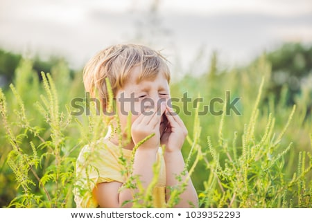 Boy sneezes because of an allergy to ragweed Stock photo © galitskaya