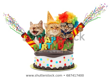 Gatos bolo de aniversário confete bonitinho animal ilustração Foto stock © lenm