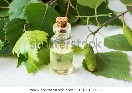 A bottle of birch essential oil with birch branches Stock photo © madeleine_steinbach