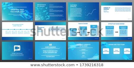 Infographics toelichting grafieken informatie vorm Stockfoto © robuart