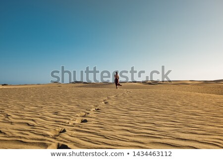 Feet of a woman in the desert Stock photo © galitskaya