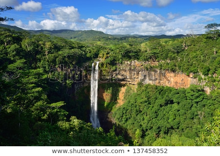 Chamarel Falls Waterfall In Mauritius Island Stock photo © AndreyPopov