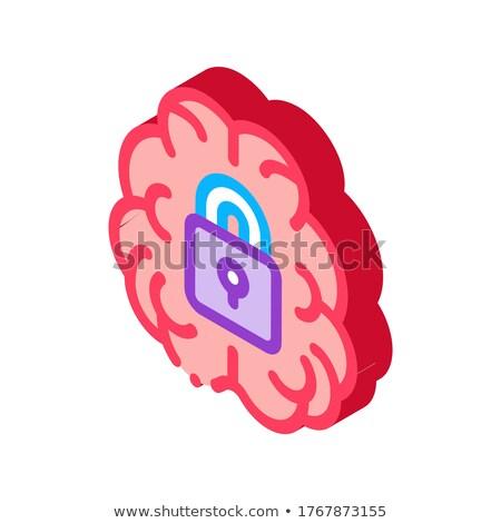 Brain And Locked Padlock isometric icon vector illustration Stock photo © pikepicture