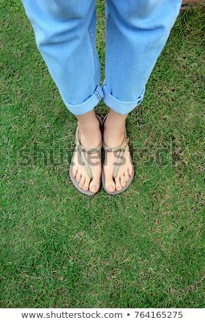 voeten · zomer · veel · kleurrijk · strand - stockfoto © inxti