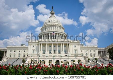 detalhes · Capitólio · edifício · Washington · DC · arquitetura · branco - foto stock © Frankljr