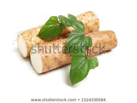 Chinese yam background Stock photo © dacasdo