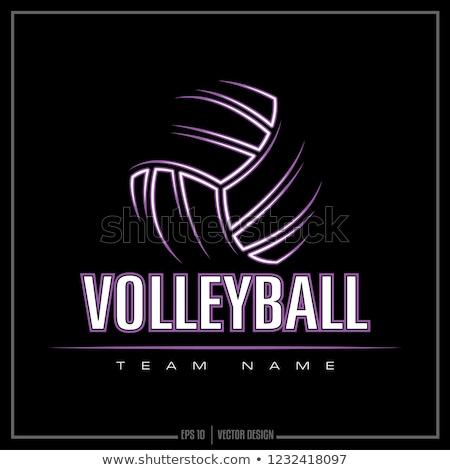 Voleibol logotipo vermelho preto círculo isolado Foto stock © cidepix