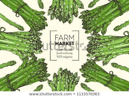 Asparagus agriculture Stock photo © ivonnewierink