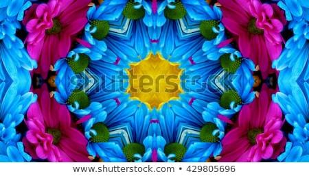 Colorido flor caleidoscópio amor projeto aniversário Foto stock © Sylverarts