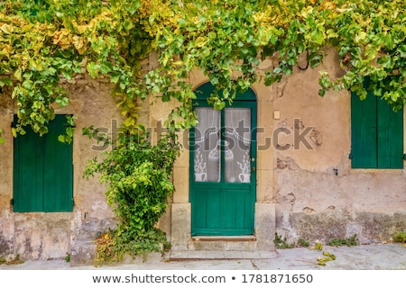leaves and old fashioned building at autumn stock photo © vetdoctor