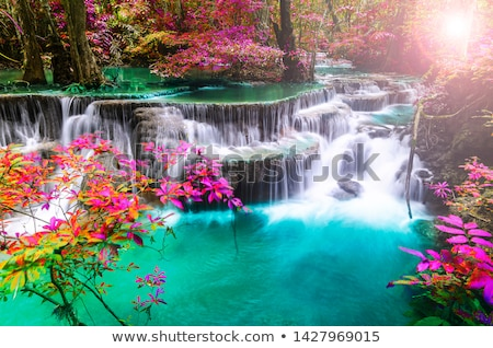 Waterfall in the forest in autumn season Stock photo © 3523studio