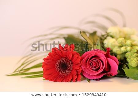 Stok fotoğraf: Turuncu · papatya · beyaz · ahşap · masa · çiçek