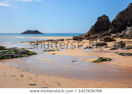 Soar mill cove Beach Devon England Stock photo © ollietaylorphotograp