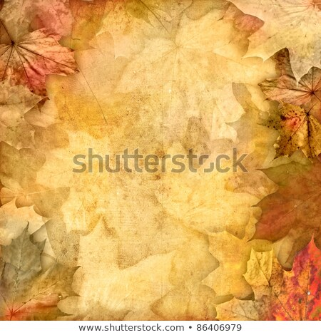 retro beige old paper autumn background Stock photo © marinini