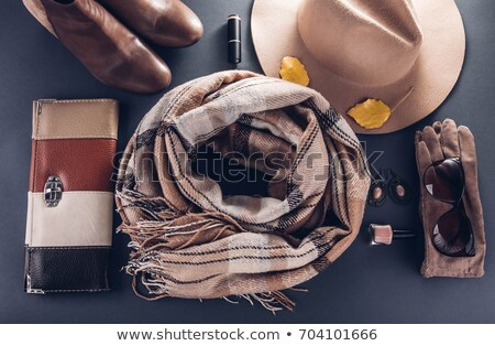 vintage bag, gloves and scarf  Stock photo © marylooo