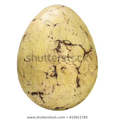 dinosaur egg Stock photo © Hochwander