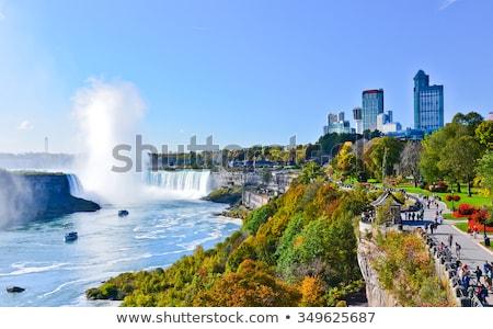 Fák erdő Niagara vízesés Ontario Kanada út Stock fotó © bmonteny
