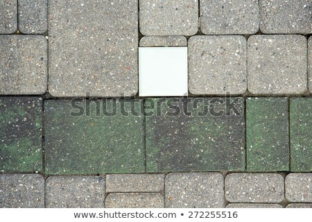 Fiber optic light in a brick paved patio Stock photo © ozgur