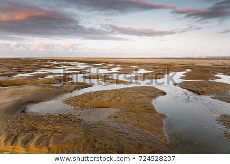 sunrise · plage · faible · marée · ciel · soleil - photo stock © juhku