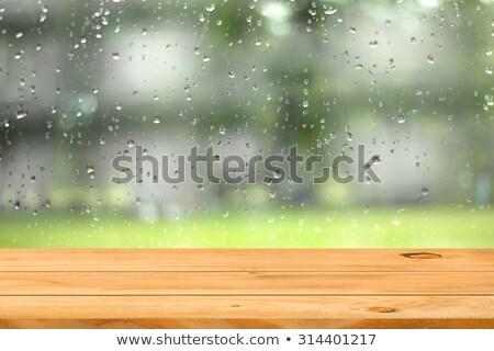青 木製 雨 値下がり 水 ストックフォト © morrbyte