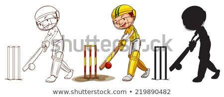 críquete · menino · ilustração · engrenagem · esportes · jovem - foto stock © bluering