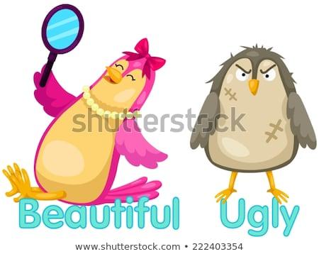 ellenkező · szavak · különböző · illusztráció · boldog · gyümölcs - stock fotó © bluering