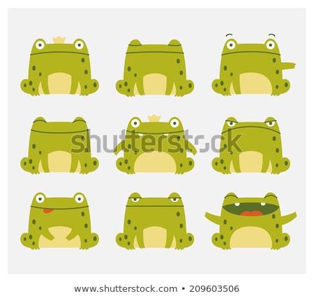 Amarillo rana cara feliz ilustración arte tropicales Foto stock © bluering