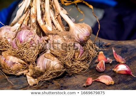 Ciąg czosnku żywności ściany warzyw świeże Zdjęcia stock © Digifoodstock