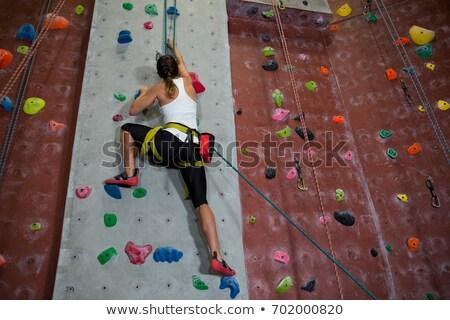後視圖 運動員 攀岩 工作室 健身 男子 商業照片 © wavebreak_media