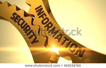 information security on the golden cog gears stock photo © tashatuvango