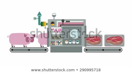 Apparatus for cooking cuts of meat: steak. Machine production pr Stock photo © popaukropa