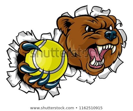 bear holding tennis ball breaking background stock photo © krisdog