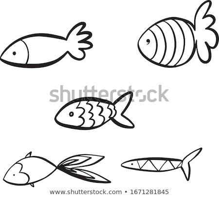 doodle fishes set, underwater world Stock photo © balasoiu