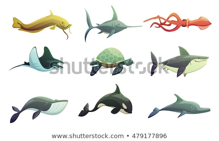 silhouette · épée · poissons · blanche · mer · signe - photo stock © bluering