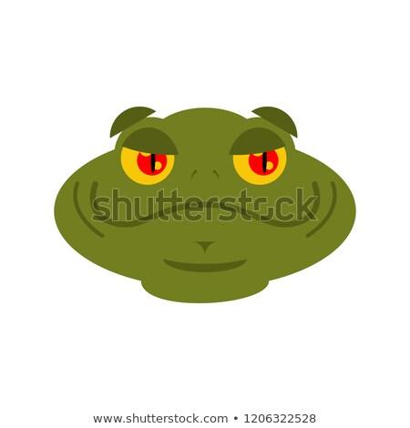 Kurbağa neşeli karakurbağası avatar iyi duygu Stok fotoğraf © popaukropa
