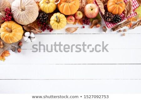Autunno foglia d'acero alimentare raccolto stagionale frutti Foto d'archivio © unikpix