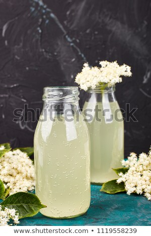 kombucha tea with elderflower on green background stock photo © illia