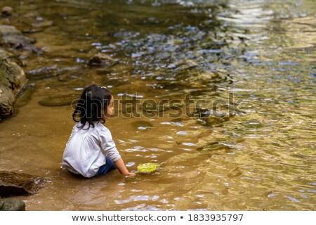 little pond by the river in the forest stock photo © colematt