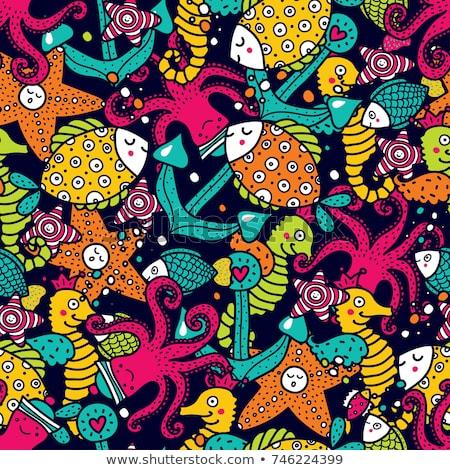 Vettore colorato conchiglie ornamento conchiglie Foto d'archivio © user_10144511