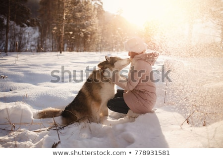 Man with Pet Walking in Winter Park, Snowy Weather Stock photo © robuart