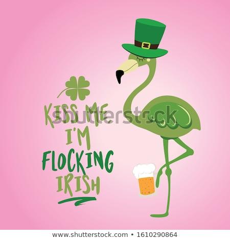 öpücük bana İrlandalı komik gün Stok fotoğraf © Zsuskaa