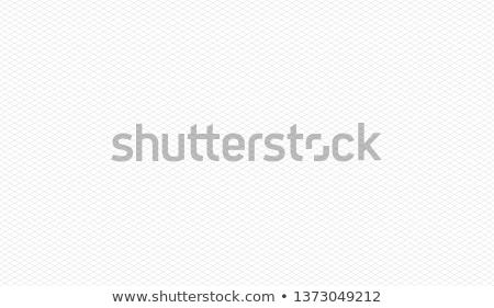 Bianco isometrica griglia nero colore Foto d'archivio © evgeny89